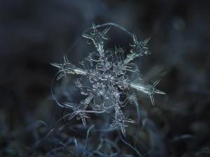 Метод снежинки