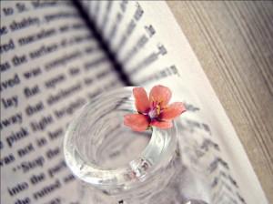 Последние вебинары лета и мастер-класс для писателей